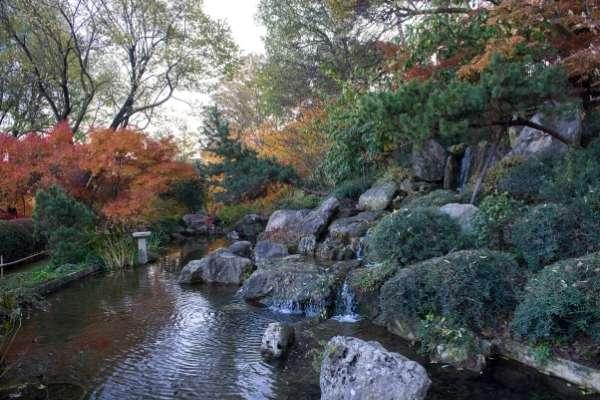 Botanical Garden Rome